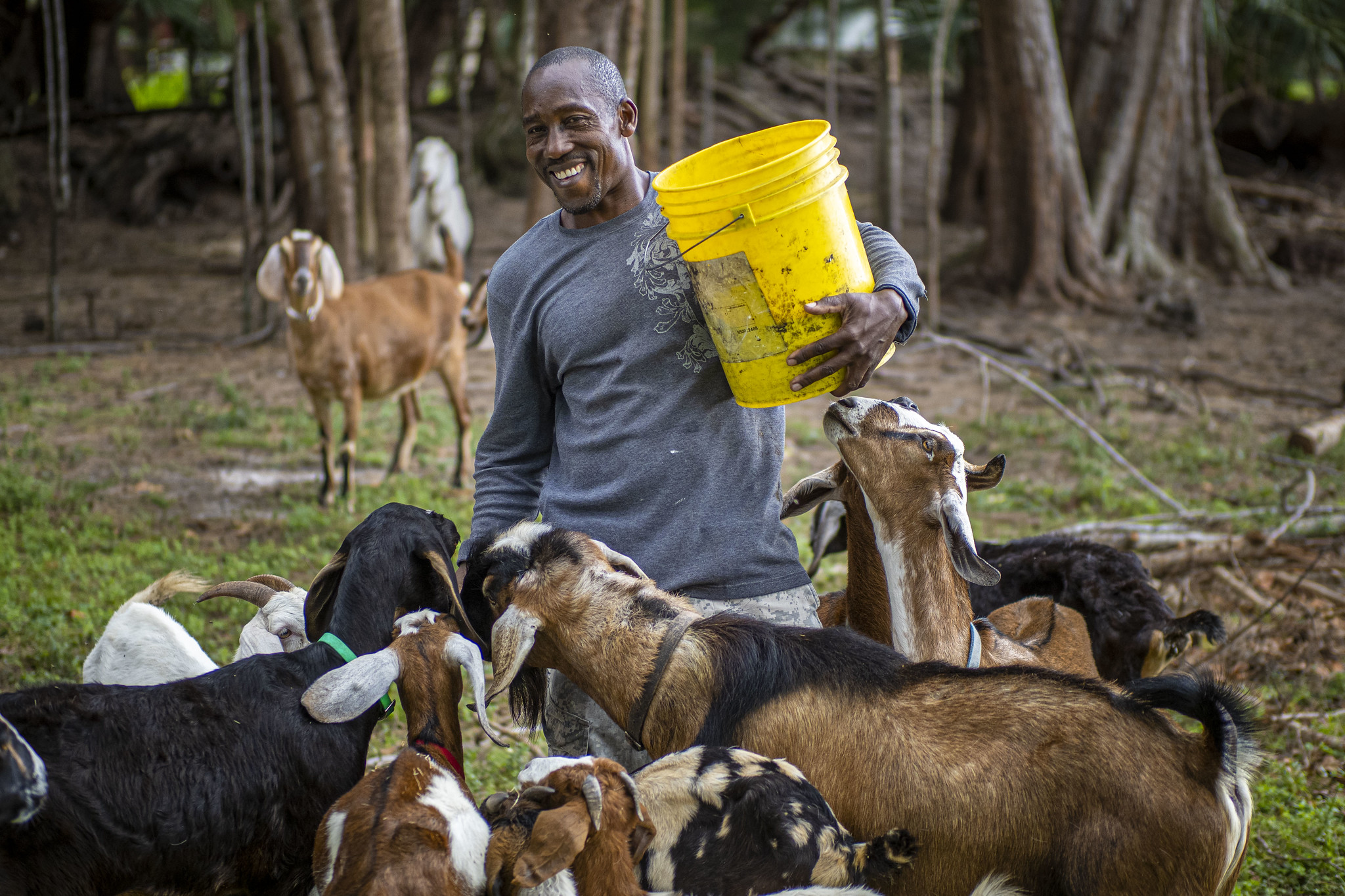 Celebrate Juneteenth By Keeping Our Promises to Black Farmers